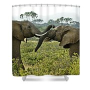 Let's Get Acquainted Shower Curtain