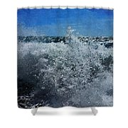 Levant Spray Shower Curtain by Julian Perry