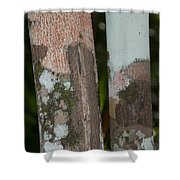 Lichen On The Trees At The Coba Ruins  Shower Curtain