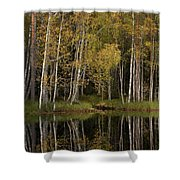 Liesilampi In September 3 Shower Curtain