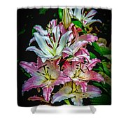 Lilies Of The Falls Shower Curtain