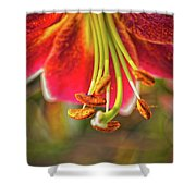 Lily Abstract Shower Curtain
