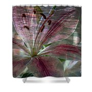 Lily Blossom Shower Curtain