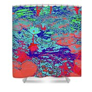 Lily Pads And Koi 24b Shower Curtain
