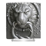 Lion And Snake Shower Curtain