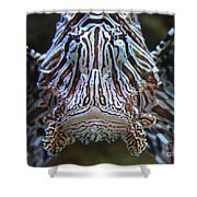 Lion Fish  Shower Curtain