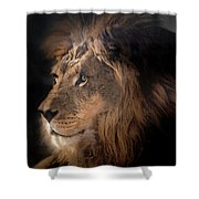 Lion King Of The Jungle Shower Curtain by James Sage