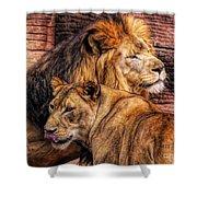 Lion Mates Shower Curtain