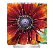 Little Sunshine Shower Curtain
