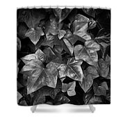 Lone Ranch Leaves 4930 Shower Curtain
