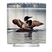 Loon Family Shower Curtain
