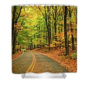 Lost In Pennsylvania - Paint Shower Curtain