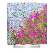 Pink And Purple Phlox Shower Curtain