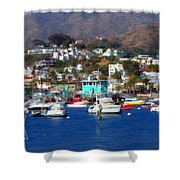 Love Of The Game Shower Curtain