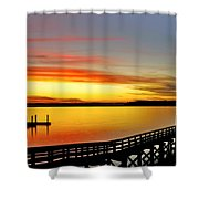 Lowcountry Autumn Shower Curtain