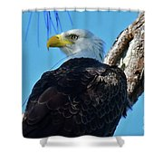 M15  Shower Curtain