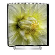 Macro Shower Curtain