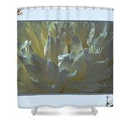 Macro Peony Shower Curtain
