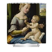 Madonna Of The Pinks Shower Curtain