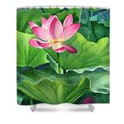 Magenta Lotus Blossom Shower Curtain