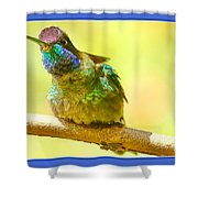 Magnificent Shower Curtain