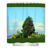 Majestic Evergreen Shower Curtain