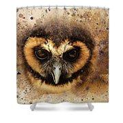 Malaysian Brown Wood Owl Shower Curtain