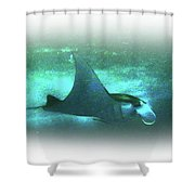 Manta Ray Dream Shower Curtain