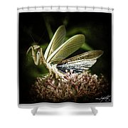 Mantis 22 Shower Curtain
