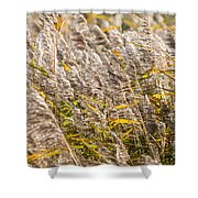 Marshes 2 Shower Curtain