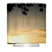 Maui Gold Shower Curtain