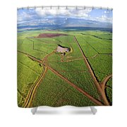 Maui Sugar Cane Shower Curtain