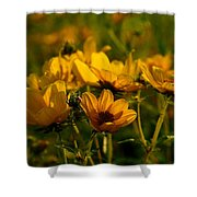 Maximilian Sunflowers Shower Curtain