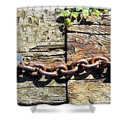 Metal Chain Shower Curtain