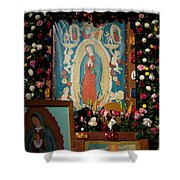 Mexico Our Lady Of Guadalupe Pilgrimage Shower Curtain