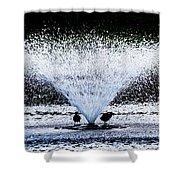 Mingus Park Shower Curtain