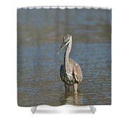 Mini Meal Shower Curtain