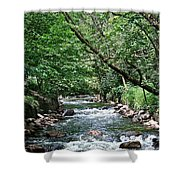 Minnehaha Creek Shower Curtain