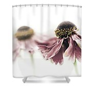 Mirrored Beauty Shower Curtain