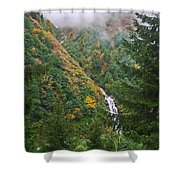 Misty Forest Turkey  Shower Curtain