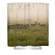 Misty Morning On The Savannah Shower Curtain