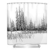 Misty Reeds Shower Curtain