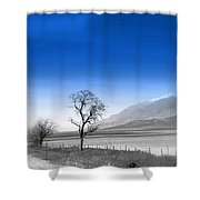 Misty Tree Shower Curtain