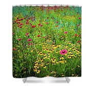 Mixed Wildflowers In Bloom Shower Curtain