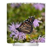 Monarch Shower Curtain