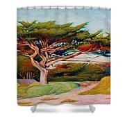 Monterey Cypress Shower Curtain