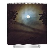 Moonlight And Tree Shower Curtain