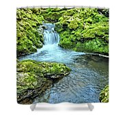 Mossy Moine Falls Shower Curtain