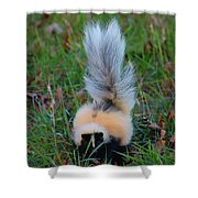 Mostly White Skunk Shower Curtain
