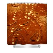 Mothers Eyes - Tile Shower Curtain